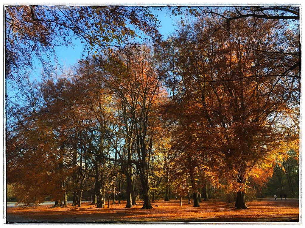 Treptower-Park-Herbst.jpg